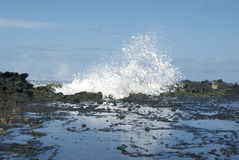 Wave Breaking on Lava Rocks royalty free stock images