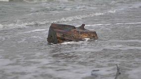 Wave che schiaccia costa nell'uragano stock footage