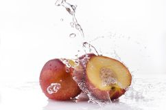 Nectarines with water splash. A wave of clear water falls on some nectarine peaches on a white background Royalty Free Stock Images