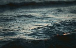Wave close up royalty free stock images