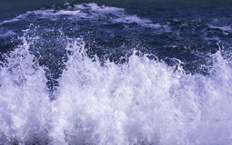 Wave crash with foam Royalty Free Stock Image