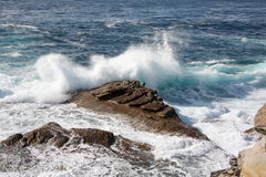 Wave crashes over rocks. Wave breaks over rocks at high tide Royalty Free Stock Photography