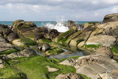 Wave crashing on rocks covered in seaweed. Wave crashing on rocks covered in green seaweed on shore Royalty Free Stock Photography