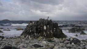 Wave Crashing on Rocks stock video footage