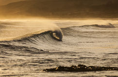 Wave cresting. A perfect wave breaking on a summer's evening Stock Image