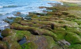 Wave-cut platform,natural landscape. Royalty Free Stock Photography
