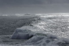 Wave in a dark sparkling sea Royalty Free Stock Photography