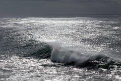 Wave in a dark sparkling sea Royalty Free Stock Photos