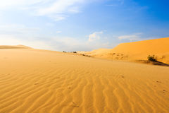 Wave on desert at Mui Ne, South Vietnam Stock Photo