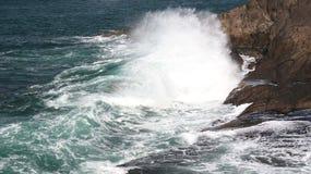 Wave di schianto sulla costa dell'Oregon Immagini Stock