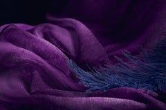 Wave di struttura viola elegante del tessuto con la piuma blu fine Immagine Stock Libera da Diritti