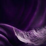 Wave di struttura viola elegante del tessuto con la piuma rosa fine Immagini Stock