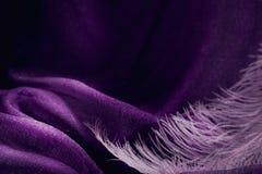 Wave di struttura viola elegante del tessuto con la piuma rosa fine Immagine Stock