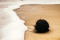 Wave e noce di cocco sulla sabbia Fotografie Stock Libere da Diritti