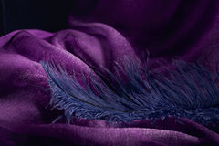 Wave of elegant violet textile texture with fine blue feather. Royalty Free Stock Photography