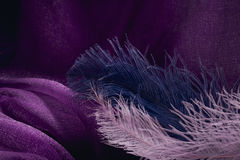 Wave of elegant violet textile texture with fine pink and blue f. Eathers. Beautiful, delicate and gentle background Stock Image