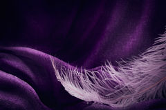Wave of elegant violet textile texture with fine pink feather. Beautiful, delicate and gentle background Stock Photo