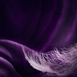 Wave of elegant violet textile texture with fine pink feather. Beautiful, delicate and gentle background Stock Images