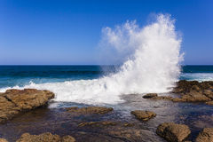 Wave Exploding Water Royalty Free Stock Image
