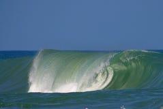 wave för bravalasalsa Arkivfoto