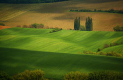 Wave fields during Spring royalty free stock photography
