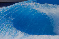 Wave Flowing Wave-Pool. Wave generated by water pumps up the blue vertical wall to create a fast flowing standing hollow curling wave for thrill seekers to surf Royalty Free Stock Photography