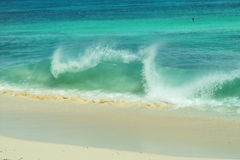 Wave fun, tropical sand beach. Royalty Free Stock Photography