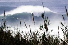 Wave gigante nel Portogallo Fotografie Stock