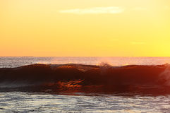 Wave in the golden light of sunrise Stock Photos