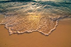 Golden sand beach and wave swapping over royalty free stock photo