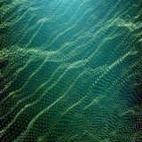 Wave Grid Background. Ripple Grid. Lattice Background. Glowing Grid. Stock Image