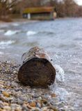 Wave hits a tree trunk royalty free stock photo