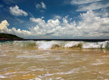 Wave in Indian ocean royalty free stock photo