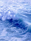Wave in ocean Stock Images
