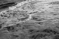 Wave in the ocean. Black and white photo stock images