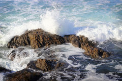 Wave in the Pacific Ocean. Wave crashing on a rock in the Pacific Ocean stock photos