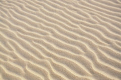 Wave patterns on a sand dune Stock Image