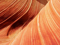 The Wave - Petrified Sandstone. The swirling petrified sandstone of The Wave in the Coyote Buttes region of the Paria-Vermillion Cliffs Wilderness near the Utah/ Royalty Free Stock Images