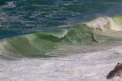 The Wave Royalty Free Stock Photography