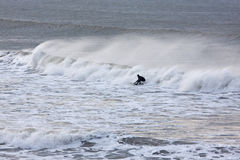 Wave Rider Stock Photos