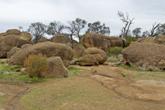 Wave Rock. Granite boulders laying on top of the  monolith near Hyden in Western Australia Royalty Free Stock Image