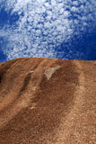 Wave Rock In Western Australia Stock Images
