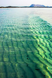 Wave in the sea Stock Photography