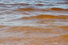 Wave sea beach on top view Royalty Free Stock Photography