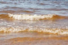Wave sea beach on top view Stock Images