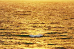 Wave on the sea at sunset stock photography