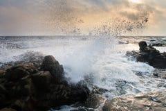 Wave splash Stock Images