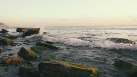 Wave splash on boulders in the water at sunset slow motion. Wave splash on boulders in the water on the beach at sunset and a seagull in the sky slow motion stock video
