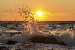 Wave splash at sunset Royalty Free Stock Photography