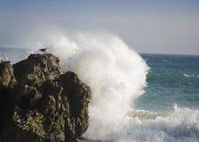 Wave splashing a big rock in the ocean. Big Wave splashing big black rock in beach in sonny day Royalty Free Stock Photography